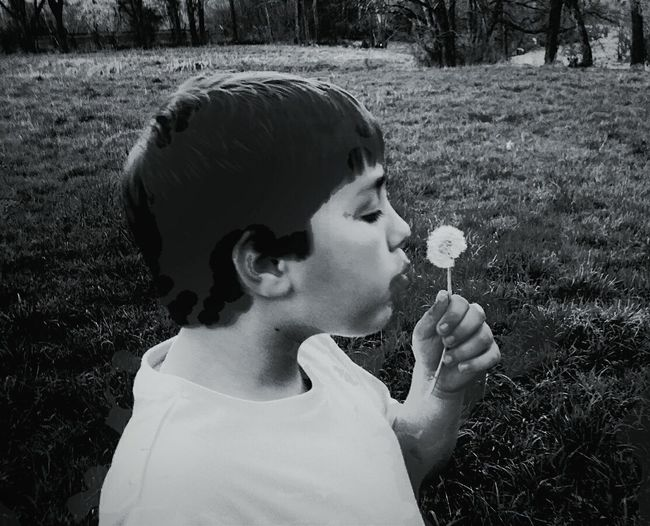 March Showcase B&w Photography Outdoors Springtime ,march Showcase Flowers Hanging Out my grandson making a wish !!!