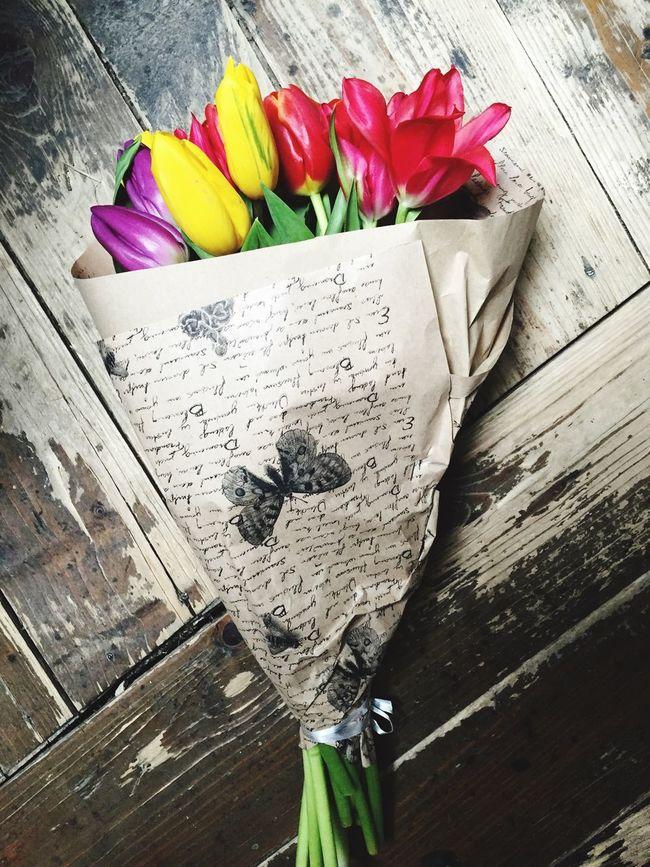 Tulips Lover Spring Flowers