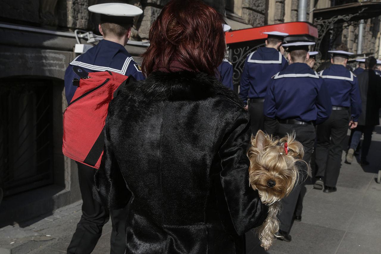 Street Streetphotography Russia Saint Petersburg Observecollective The Street Photographer - 2017 EyeEm Awards Colour Dog