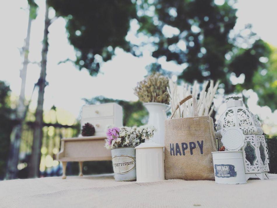 Beautiful stock photos of word,  Day,  Flower,  Horizontal Image,  Lantern