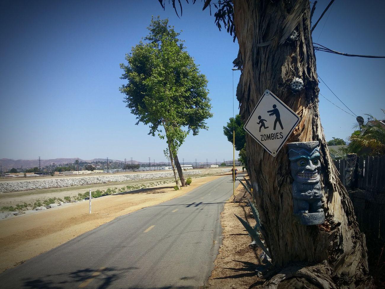 Bike Trail Zombie Biking Orange County