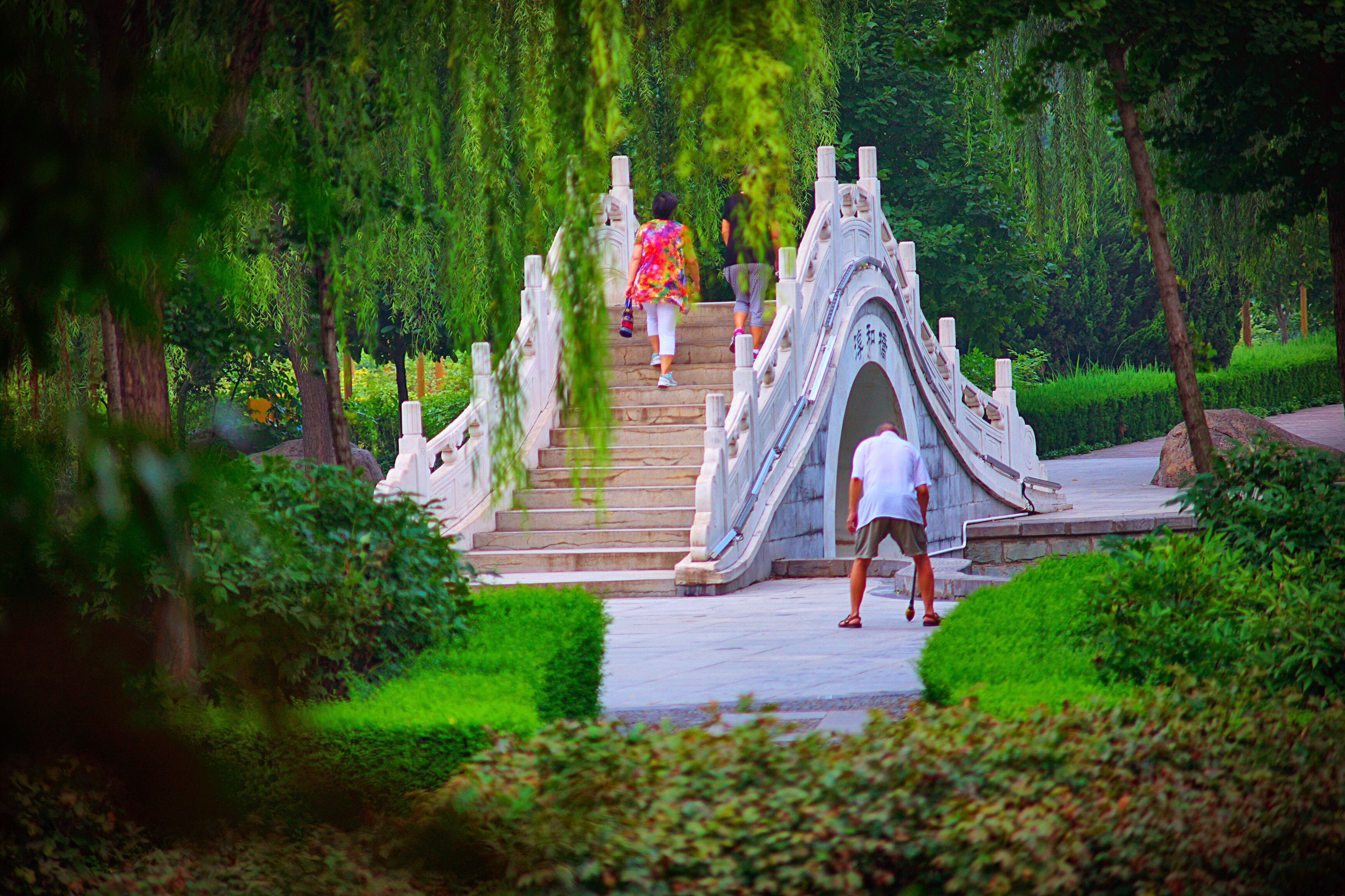 tree, built structure, architecture, plant, person, growth, park - man made space, green color, leisure activity, men, art and craft, religion, sculpture, lifestyles, day, outdoors, art, steps