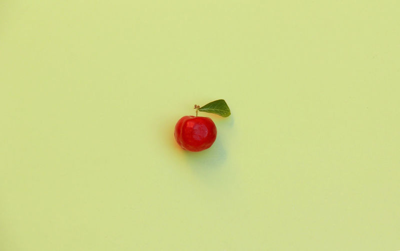 Acerola Acerola Cherry Barbados Cherry EyeEmNewHere Green Color West Indian Cherry Cherry Citric Citric Color Food Fresh Freshness Fruit Green Color Health Healthy Eating Healthy Food No People One Object Red Fruit Studio Shot Vitamin B