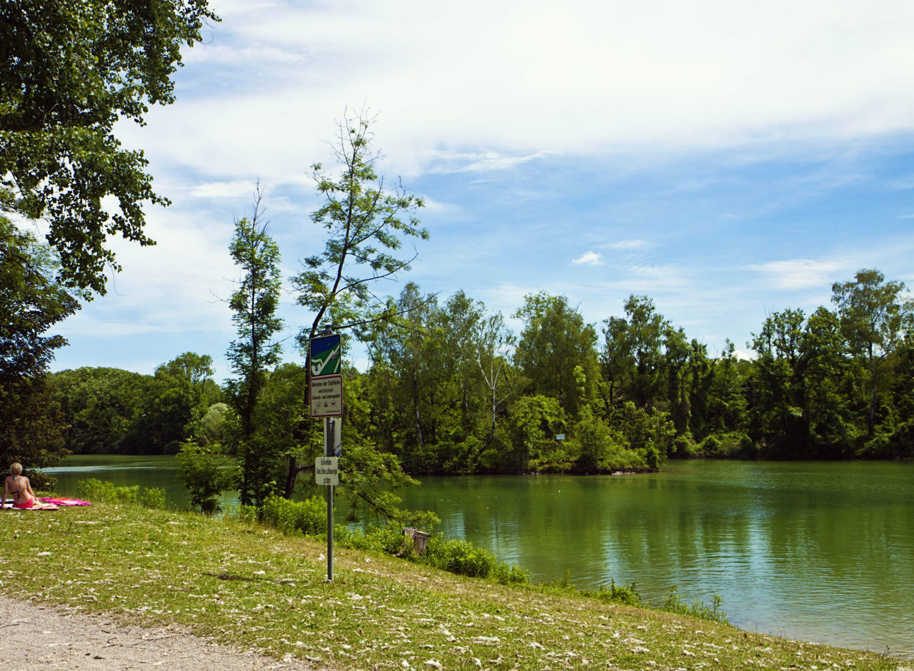 tree, growth, nature, grass, sky, tranquility, beauty in nature, cloud - sky, tranquil scene, scenics, lake, green color, outdoors, day, no people, water, landscape