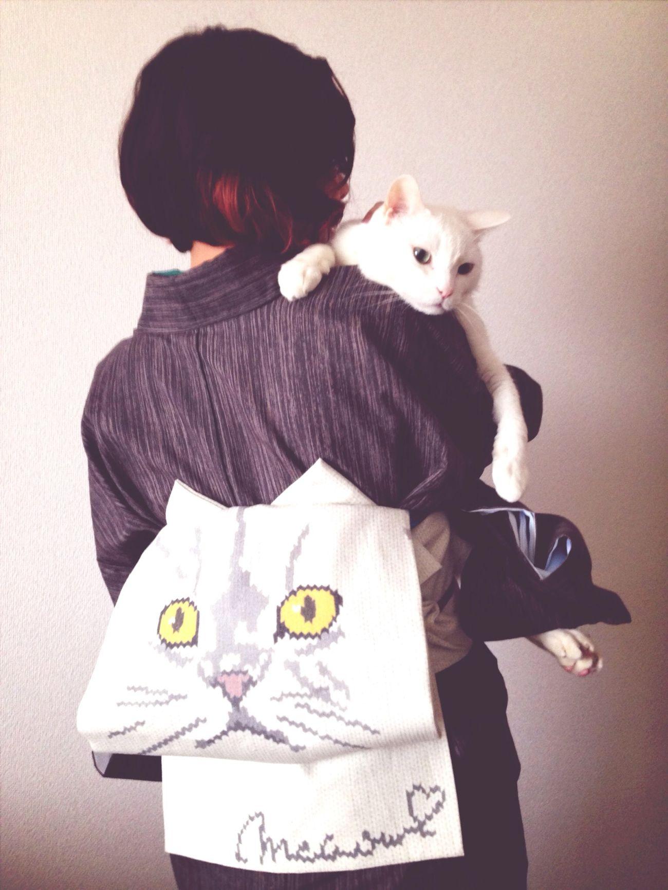 I love catとI love cat帯