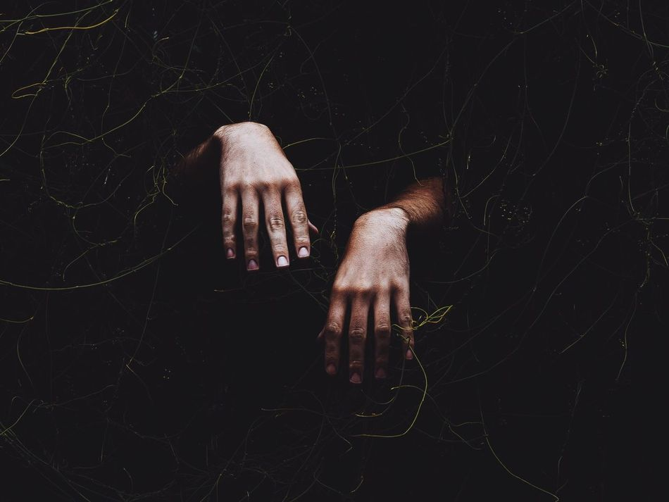 Beautiful stock photos of zombie, Covering, Cropped, Human Hand, Ivy