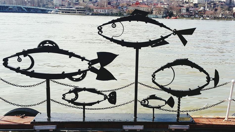 Fish See Taking Photos Enjoying Life Historical Sights Hello World Relaxing Being A Tourist Enjoying Life