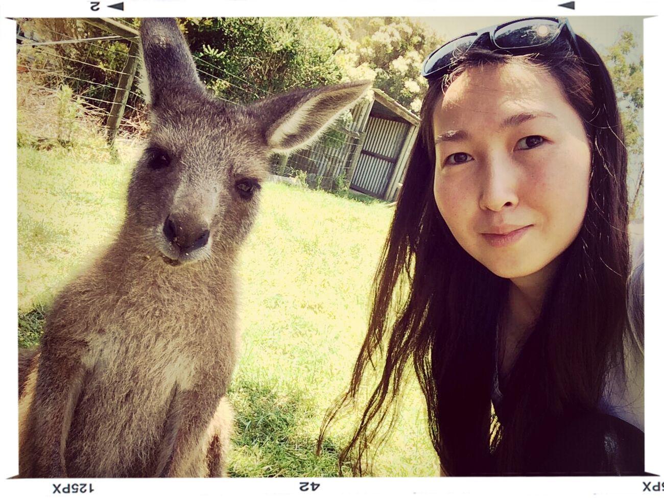Selfie hiij chadhuu? yaj hiidgiin harhuu? KangarooJack Funday Melbourne Wildselfie