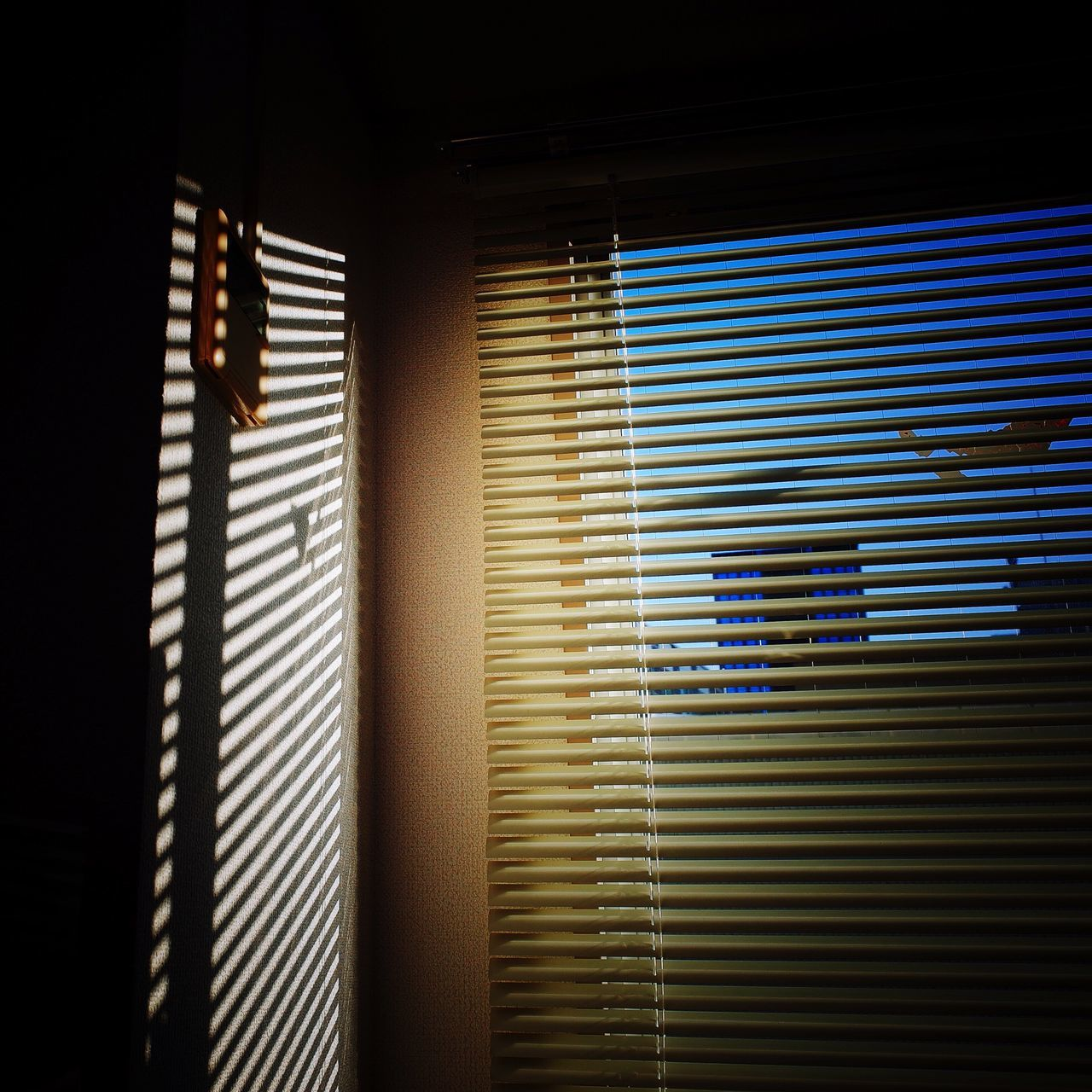 Blinds Light And Shadow Shadow Sunlight Low Angle View Window