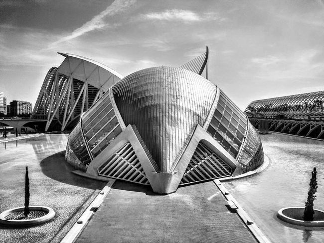 HDR Contrast Streetphotography Travel Blackandwhite Tourism Architectural Feature Architecture Valencia, Spain Calatrava
