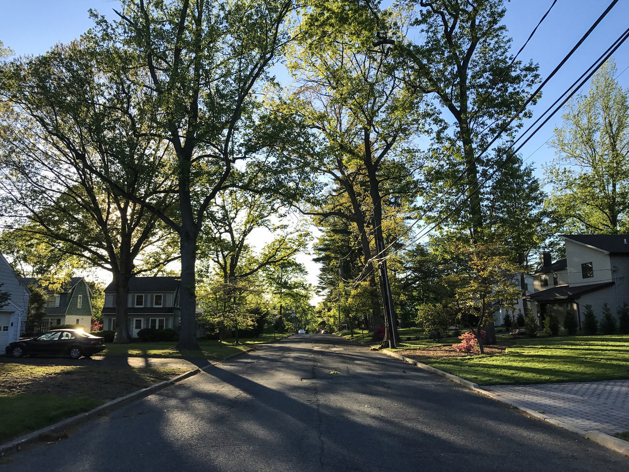 New Jersey suburbs. Photo by Tom Bland. Day Empty Streets Evening Evening Light IPhoneography Neighborhood New Jersey Nj No People Outdoors Road Spring Street Street Scene Suburbia Suburbs Sunlight Sunshine Trees United States Urban