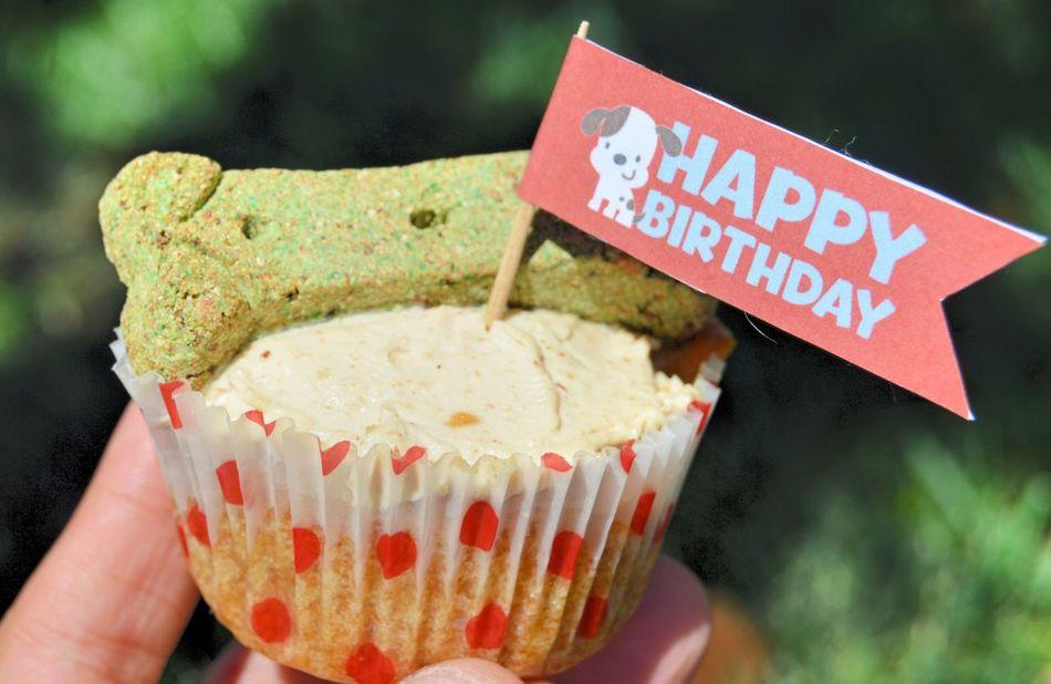 Beautiful stock photos of birthday cakes, Close-Up, Communication, Cupcake, Day