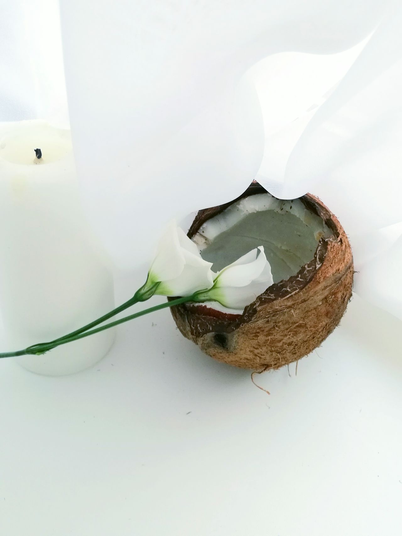 Flower Freshness Indoors  No People Morning Light Morning Food Vegan Coconut White Color Composition Candle Mood Positive