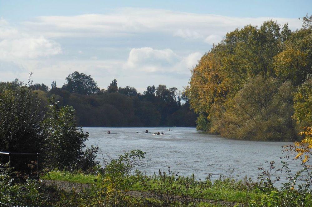 The river Thames at Kew Kew Kew Gardens River Riverside River View River Thames Thames Thames Path