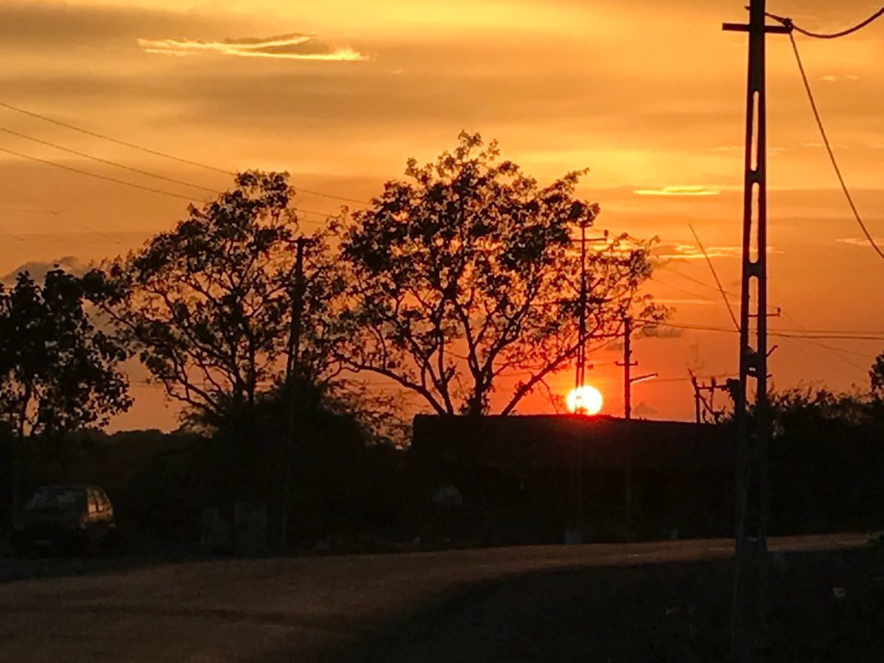 Sunset Cable Orange Color Power Line  Tree 😚 Sky 😚 Power Supply Electricity  Outdoors Scenics Road Side Without Edit ^^ The Photojournalist - 2017 EyeEm Awards EyeEmNewHere EyeEm Selects