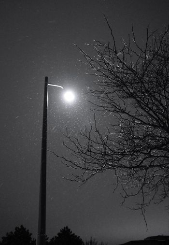 winter snow storm Monochrome Blackandwhite Ricoh Gr Lamp Night Illuminated Low Angle View No People Sky Moon Outdoors Winter Nature Space Beauty In Nature