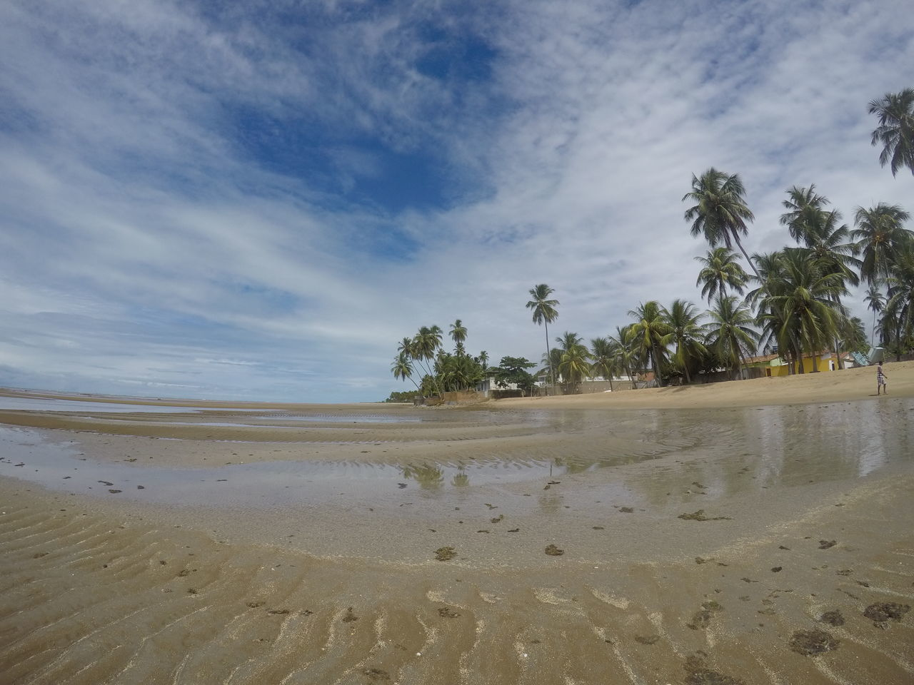 Palm Tree Sand Water Tree Nature Beach Cloud - Sky Sky Landscape Scenics Tranquility Beauty In Nature Sand Dune Day Outdoors No People Sea Low Tide Gopro Goprohero5black