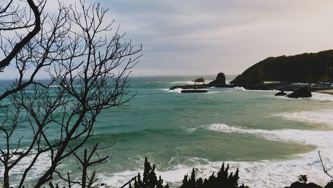 Surf Surf's Up Stopmotion First Eyeem Photo It's Cloud - Sky Remote Tourism Sky Non-urban Scene Bare Tree Cliff Seascape Nature Ocean Calm Horizon Over Water Tranquility Branch Beauty In Nature Nautical Vessel Sentimental 420 Stayhigh