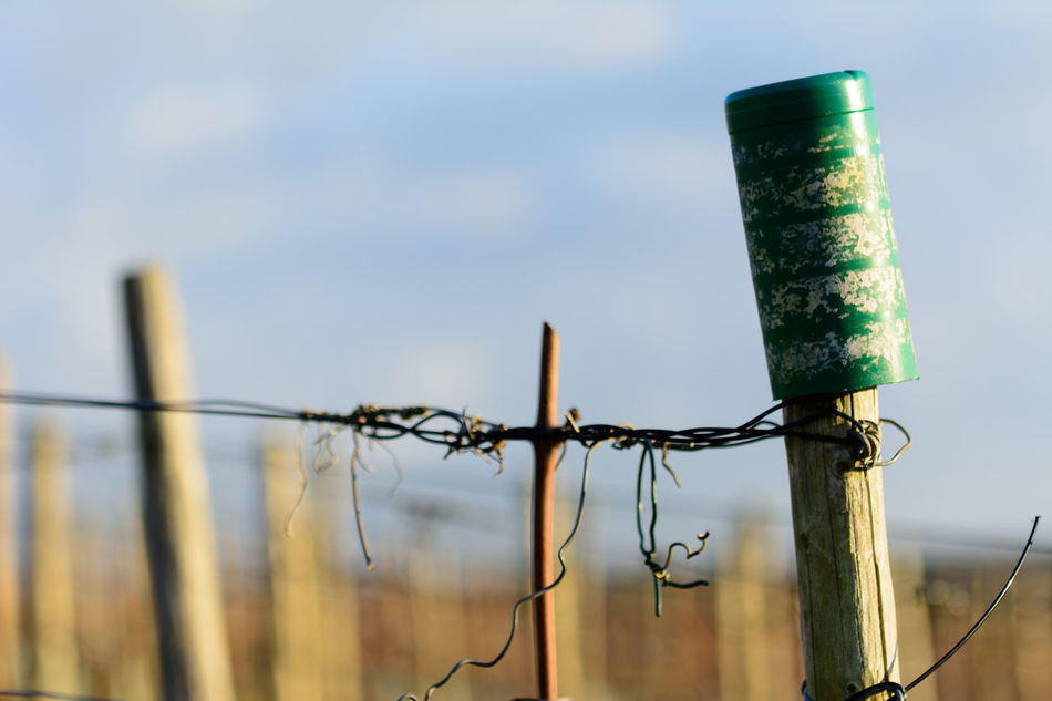 Beautiful stock photos of sicherheit, Barbed Wire, Close-Up, Container, Day