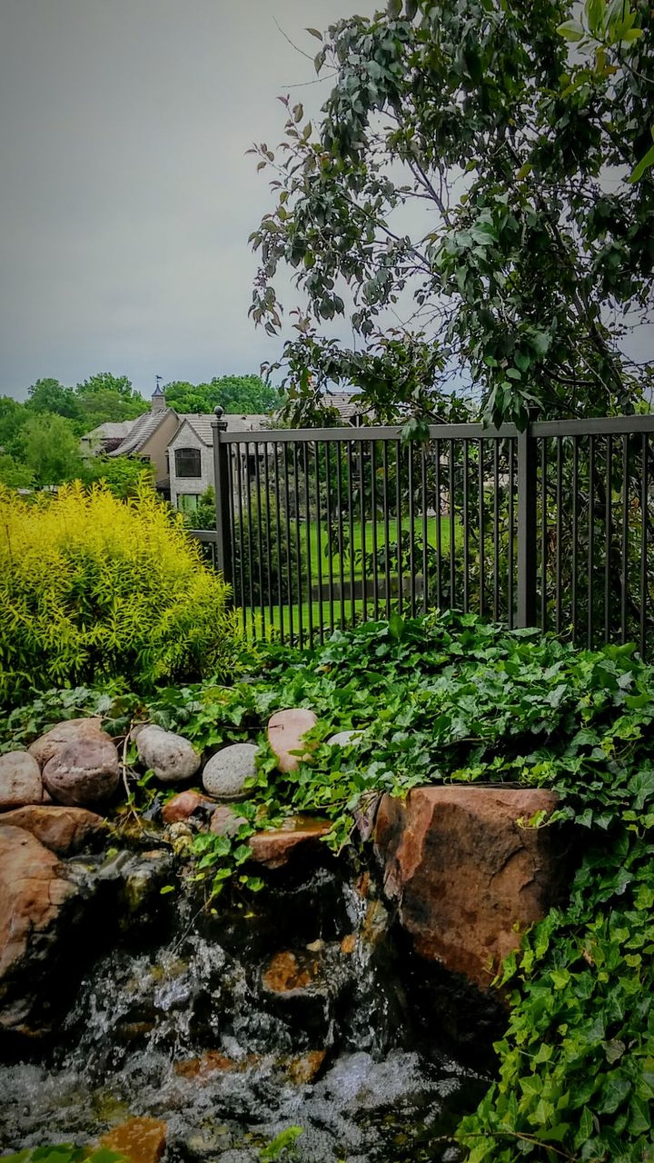 Nature Outdoors Tree Green Color Day Plant Water No People Growth Sky Beauty In Nature Grass Architecture Spring Beautiful Home Growth Yard EyeEm Best Shots Irwin Collection EyeEm Gallery Home Exterior Rocks And Water Landscape Beauty In Nature Live For The Story