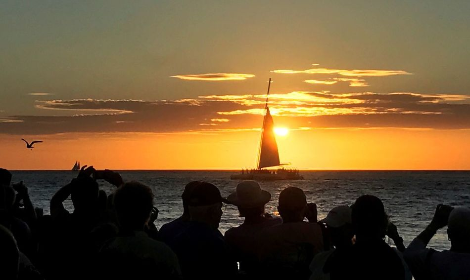 Sunset Celebration Mallory Square Silhouette Large Group Of People Togetherness Friendship Nightly Ritual In Key West The Week On Eyem Breathing Space