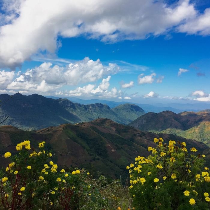 Kalaw Beautiful Clouds Beautiful Nature Mountain Beauty In Nature Sky Nature Plant Flower Landscape Trekking Viewpoint View From The Top Flowers, Nature And Beauty Flower And Mountain Green Hills And Sky Blue Sky