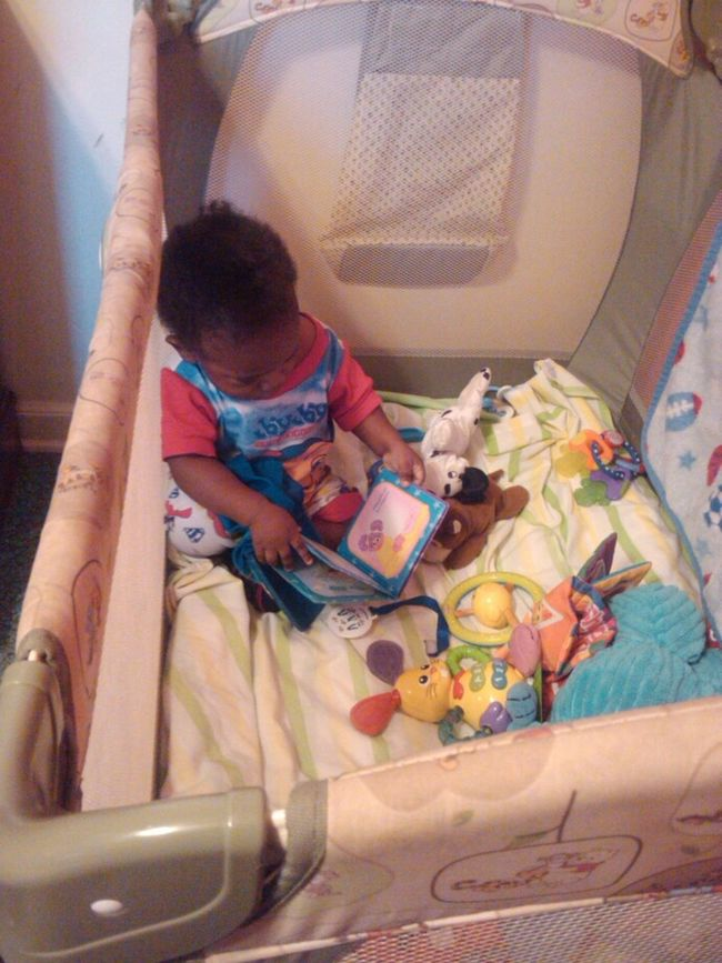 my son reading or atleast looking at pics