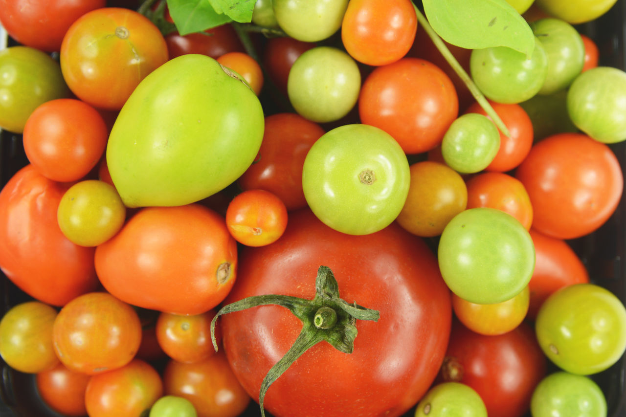 Directly Above Shot Of Multi Colored Tomatoes