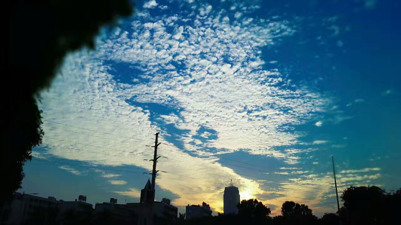 silhouette, architecture, sky, built structure, building exterior, cloud - sky, sunset, tree, outdoors, no people, nature, blue, growth, low angle view, travel destinations, city, beauty in nature, day