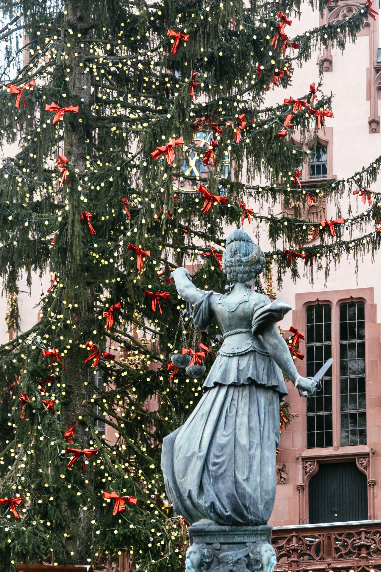 Beautiful stock photos of weihnachtsbaum, christmas, christmas tree, tree, christmas decoration