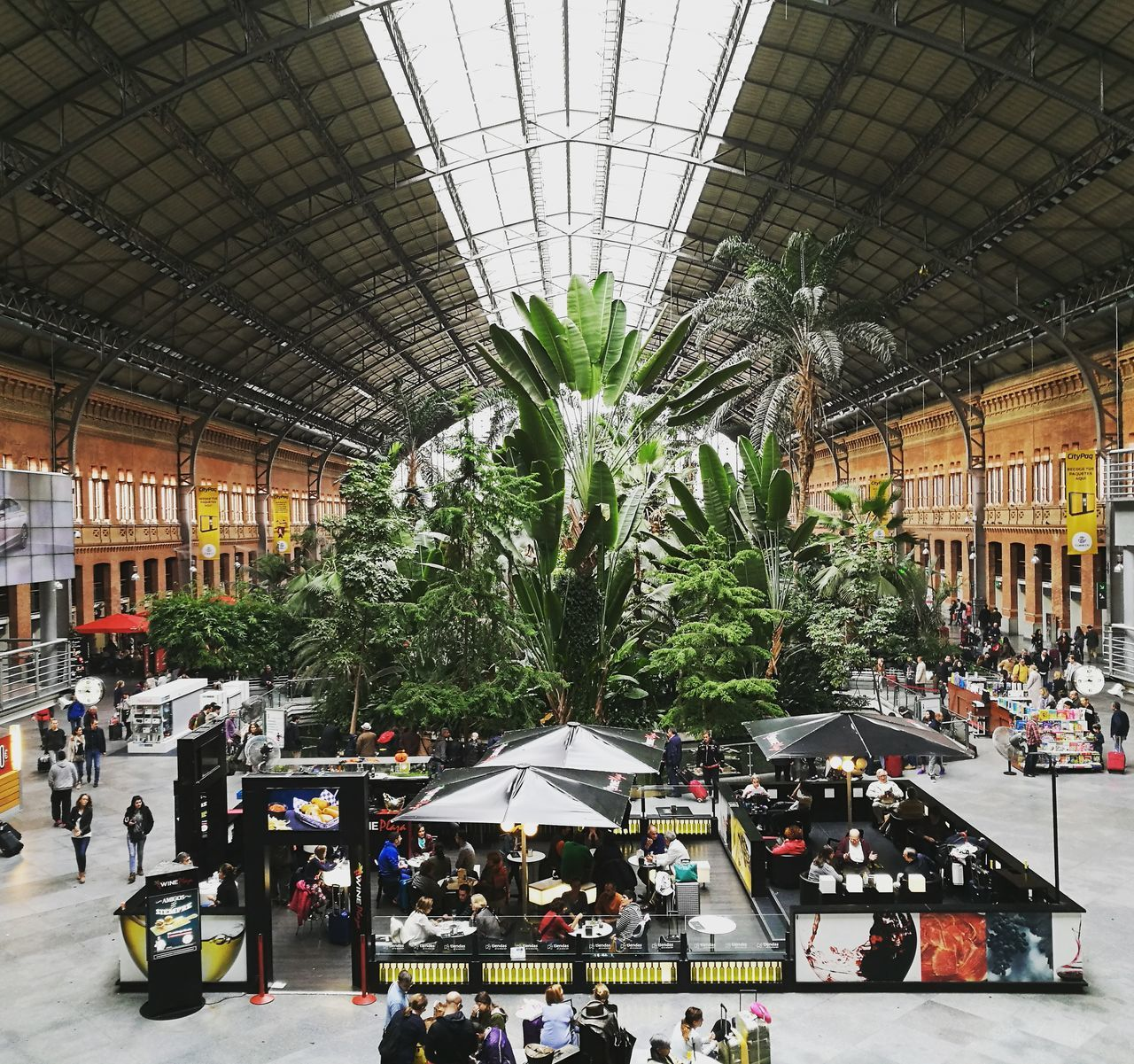 Architecture Atocha Atocha Renfe Botanical Gardens Built Structure Day Growth Indoors  Large Group Of People People Railroad Station Train Train Station Tree