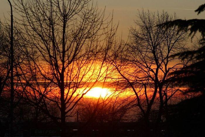 Colour Of Life tramonto