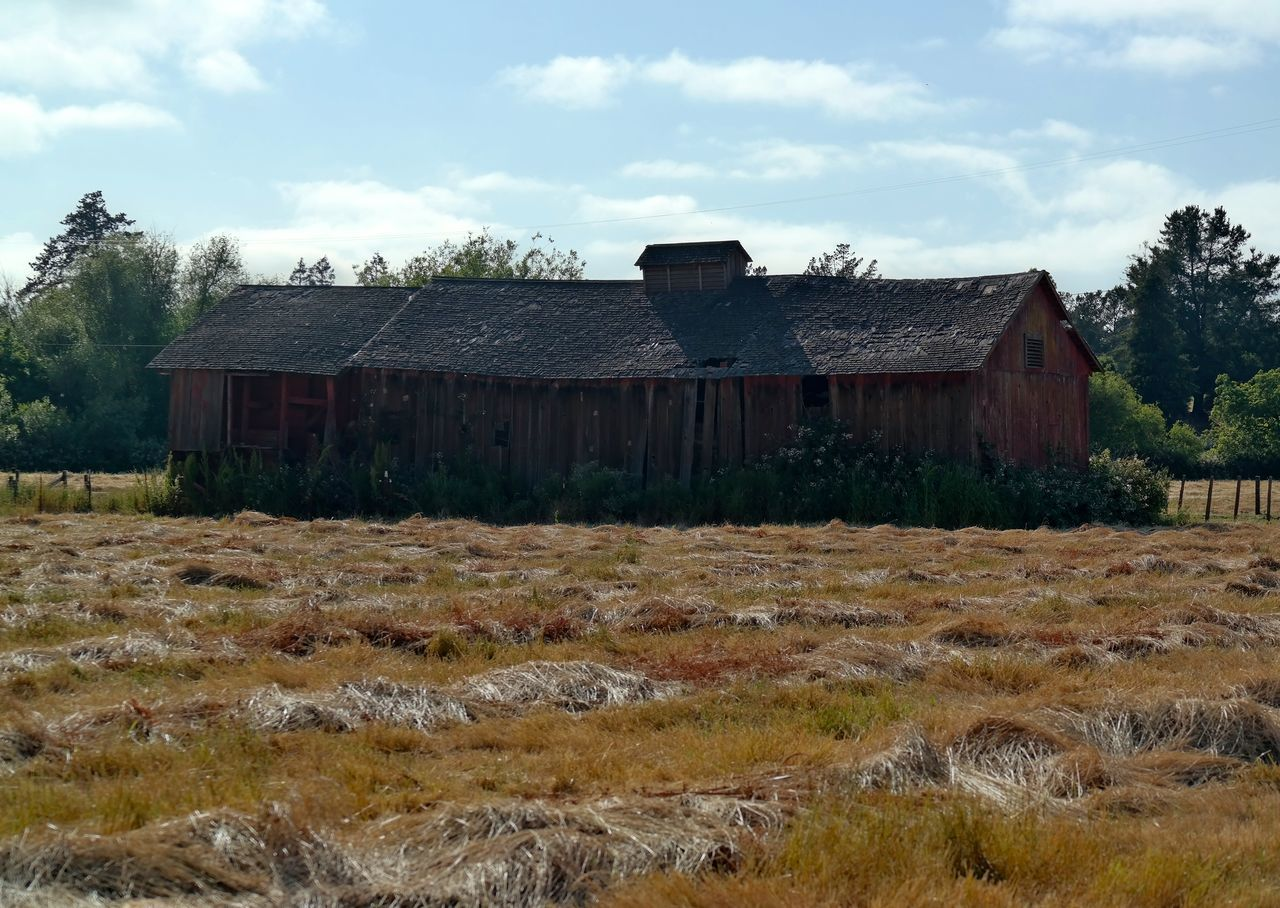 Abandonded Building Abandoned Barn Architecture Field Grass Outdoors Samsung Nx300
