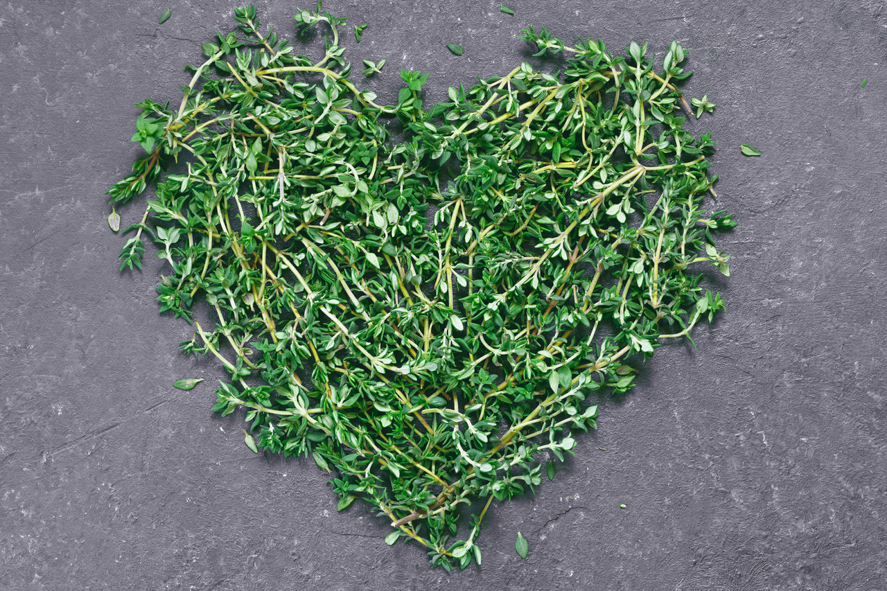 Backgrounds Food Food And Drink Freshness Green Color Healthy Eating Heart Shape Herb High Angle View Ingredient Thyme