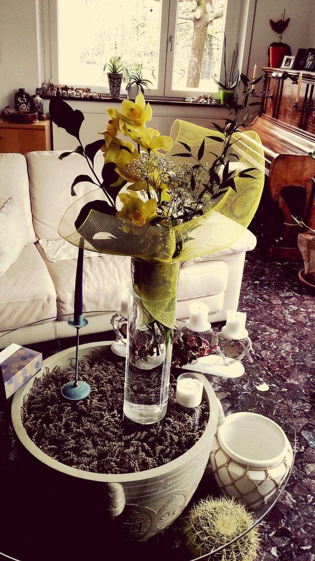 Orchidea gialla! Fiori, regali, colore, luce.. First Eyeem Photo