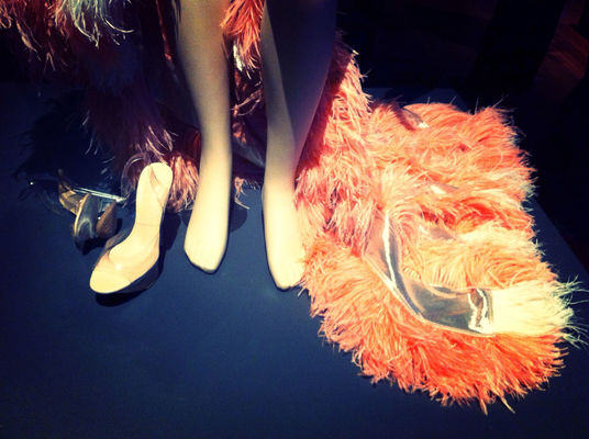 Feathers at De Young Museum by Koduckgirl