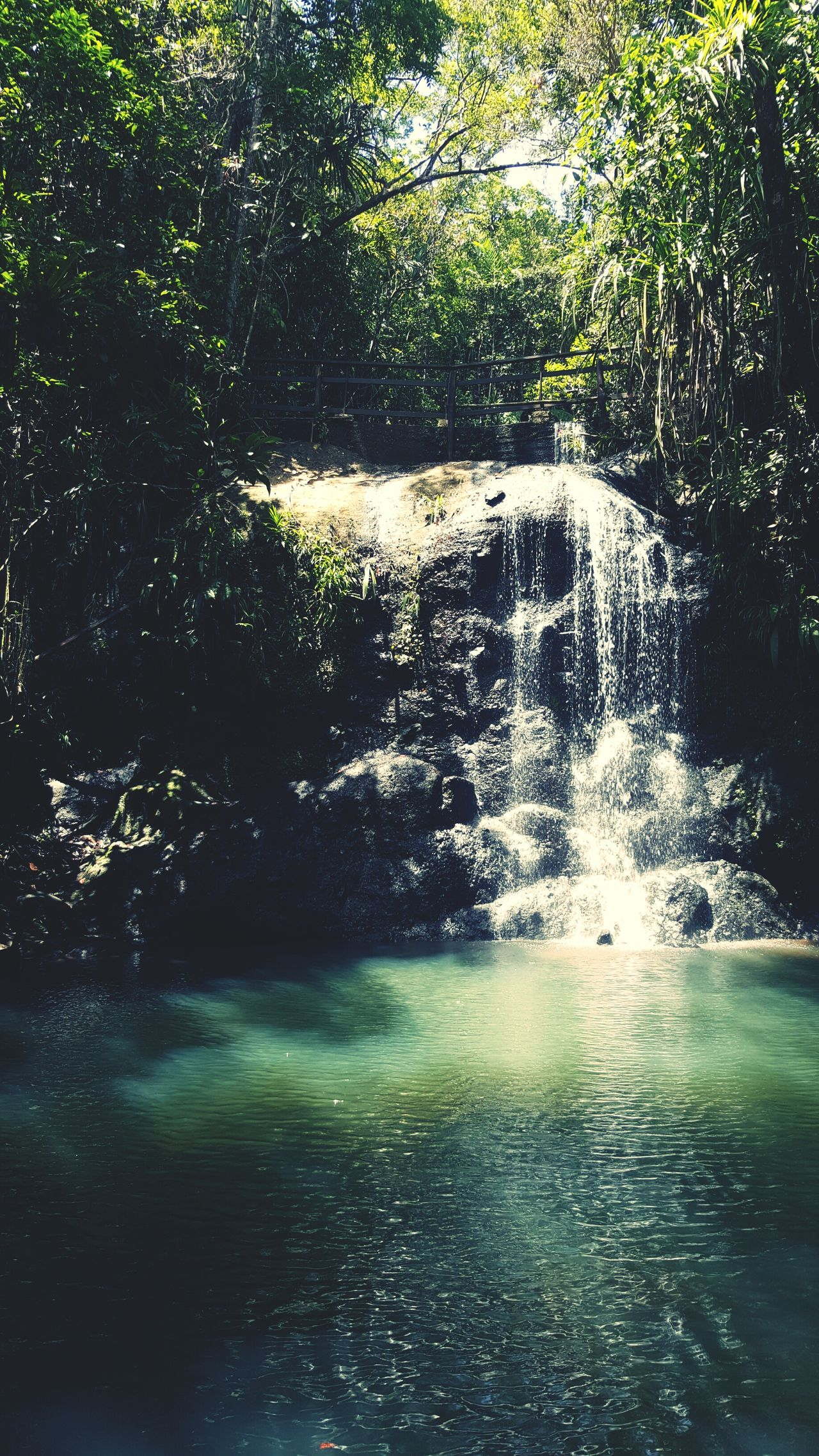Waterfall #water #landscape #nature #beautiful Breathtaking View Worth The Hike Rainforest Walks Hidden Gems  SUVA FIJI ISLANDS Relaxing Moments Cool Water