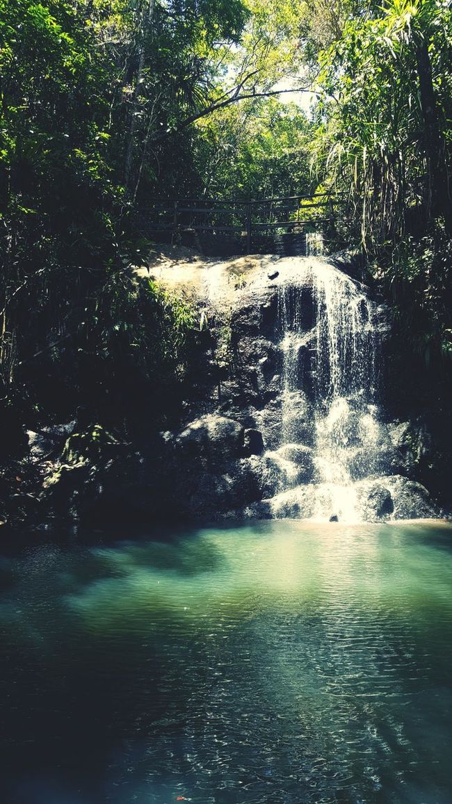 Waterfall #water #landscape #nature #beautiful Breathtaking View Worth The Hike Rainforest Walks Hidden Gems  SUVA FIJI ISLANDS Relaxing Moments Cool Water