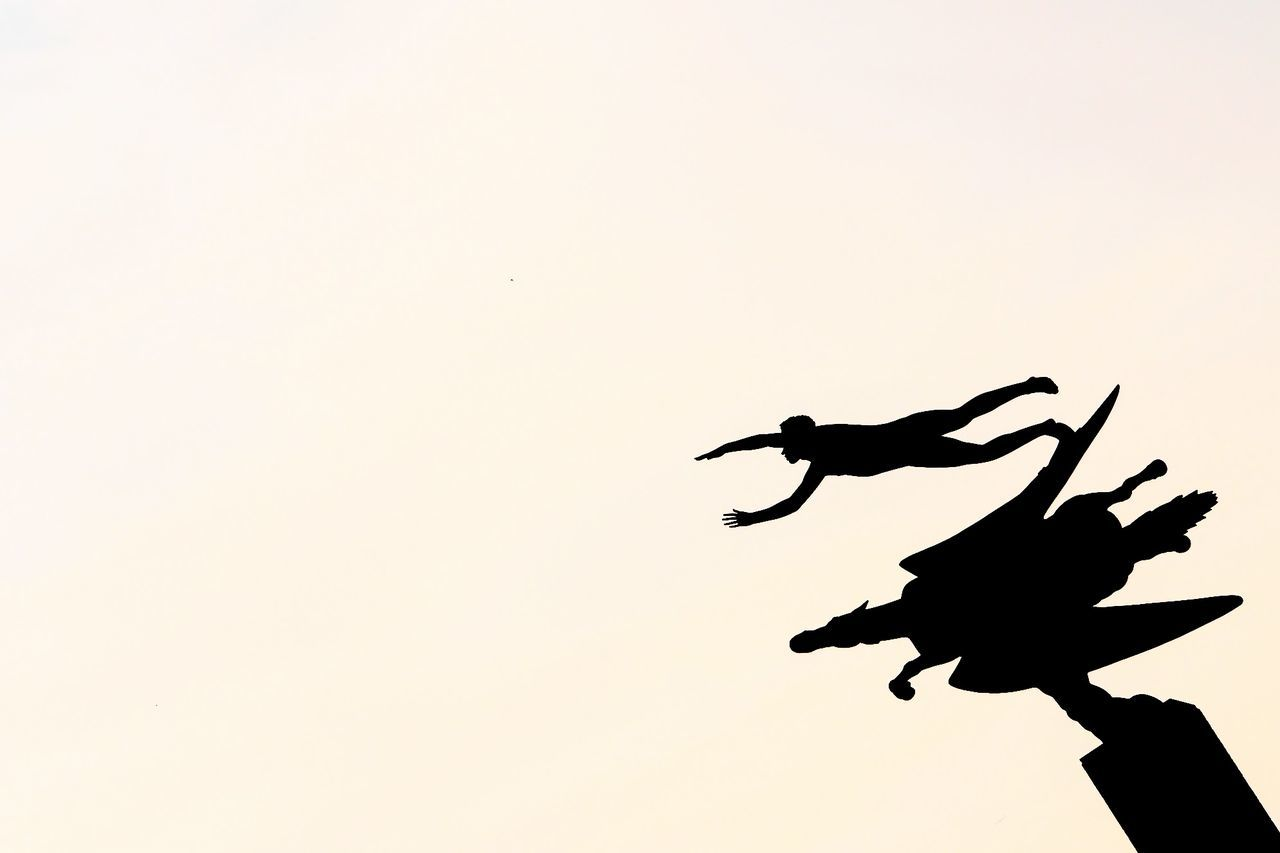 silhouette, copy space, togetherness, full length, men, outdoors, clear sky, sunset, flying, teamwork, nature, sky, day, people