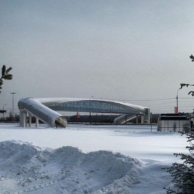 2014 -01, Новосибирск Экспоцентр . Пешеходный мост переход/ Novosibirsk. Expo centre. Bridge.