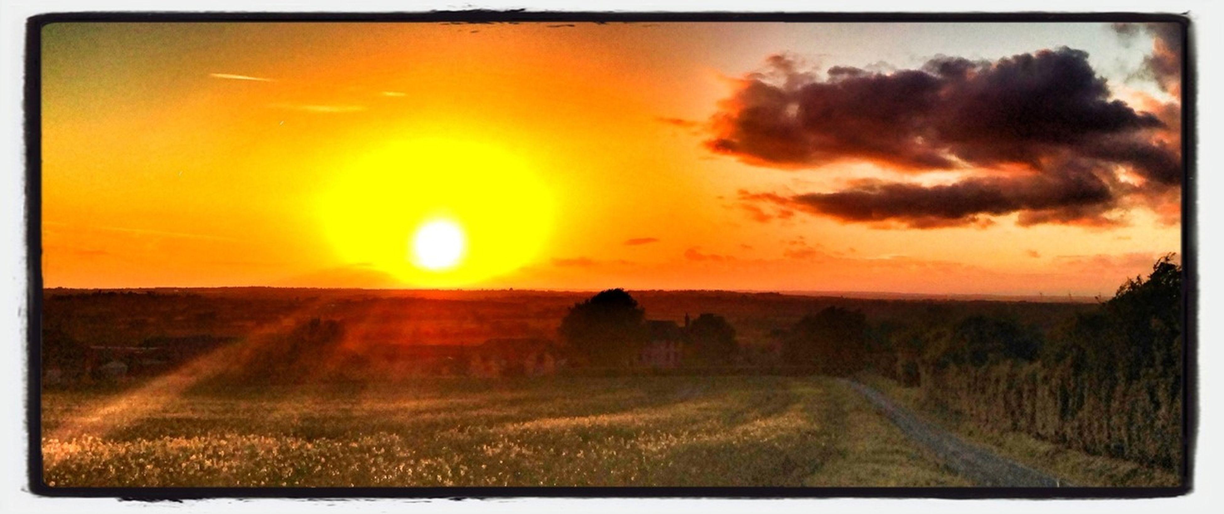 sunset, transfer print, orange color, scenics, auto post production filter, tranquil scene, landscape, sky, beauty in nature, tranquility, sun, field, nature, cloud - sky, idyllic, horizon over land, rural scene, dramatic sky, grass, sunlight