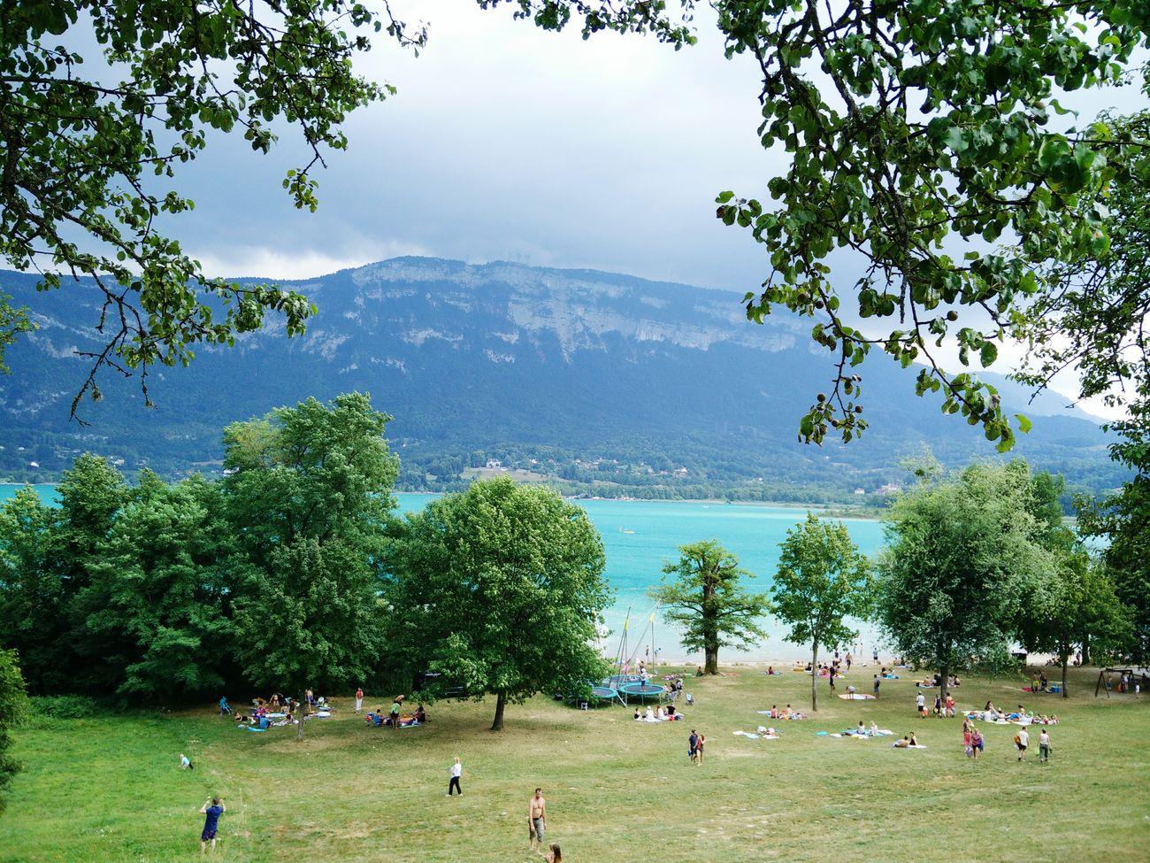 Lac D'aiguebelette Soleil Savoie Tranquility Farniente