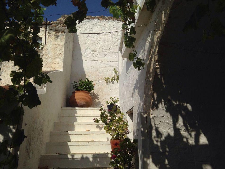 Stairs Flowers Greece