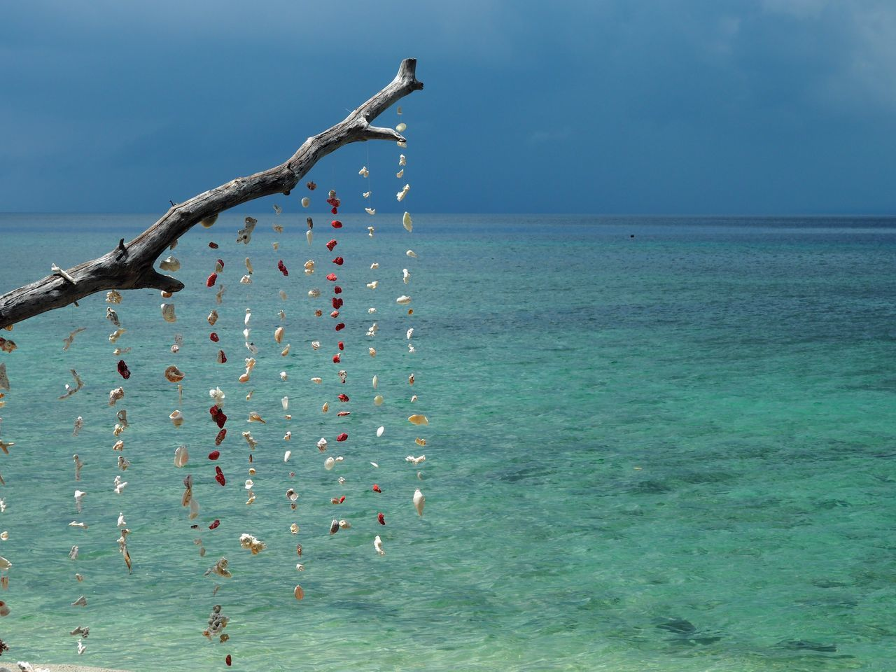 Beach Art Blue Corals Gili Air Horizon Over Water Idyllic No People Ocean Sea Seascape Shells Sky Thunderstorm Turquoise Water Water