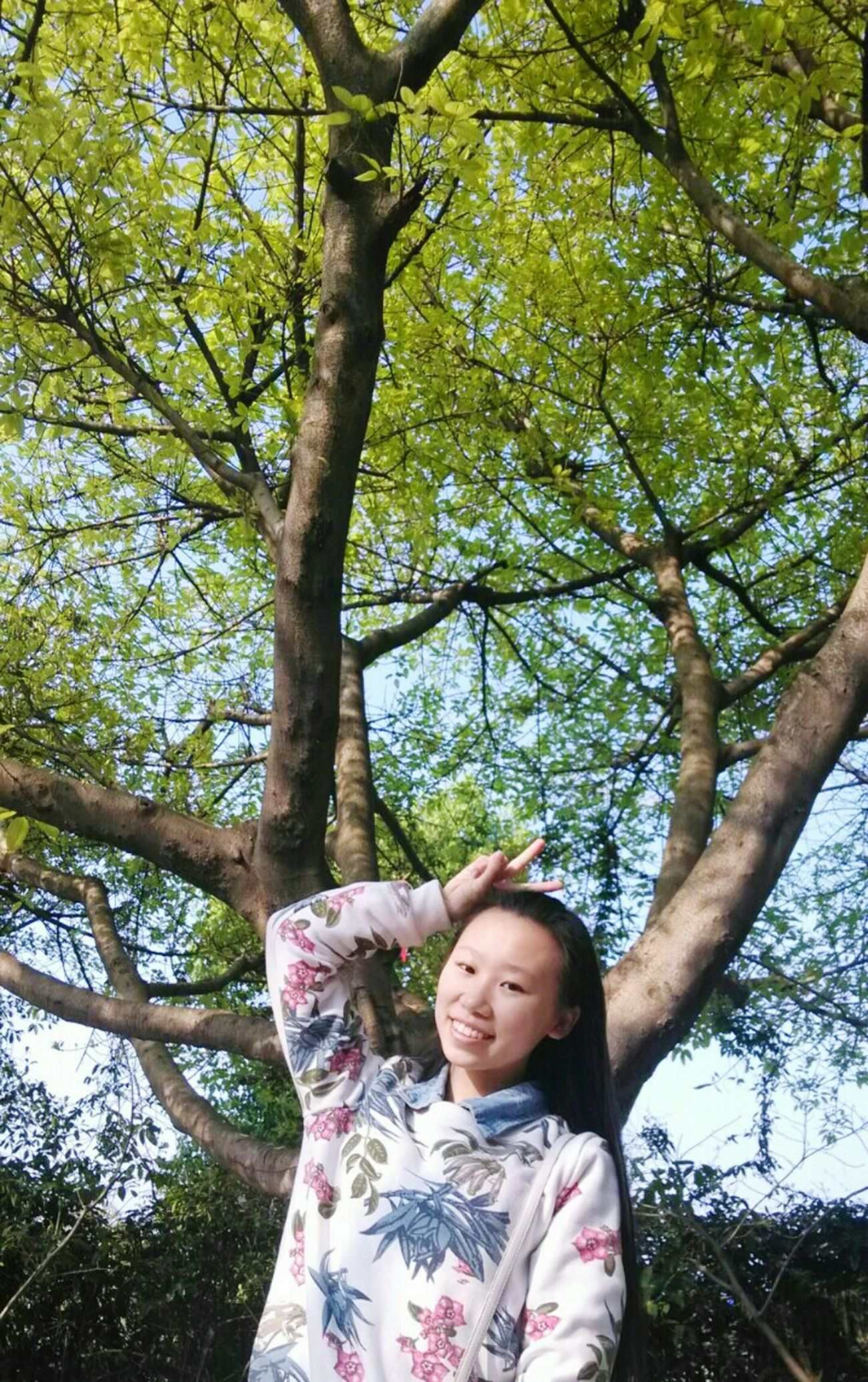 A reticent,but the heart is a sea of people. Green Lover Tree Lover Spring Fresh And Clean Fresh Day Taking Photos Cute Plant Me Sunshine ☀