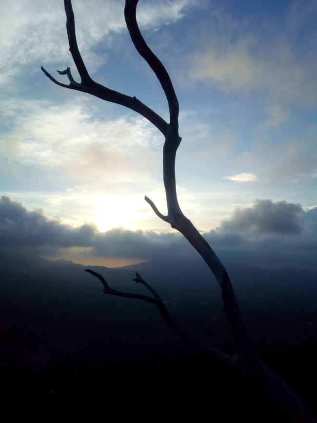 At the edge Cloud - Sky Sunset Outdoors Close-up No People Sky Day Nature Twig Tree Dead Tree Flying Clouds Sunlight Dramatic Sky Sunset Silhouettes Sunsetphotography Backgrounds Itsmorefuninpalawan Sunphitography Sunbeam Tree Palawan EyeEmNewHere Illuminated