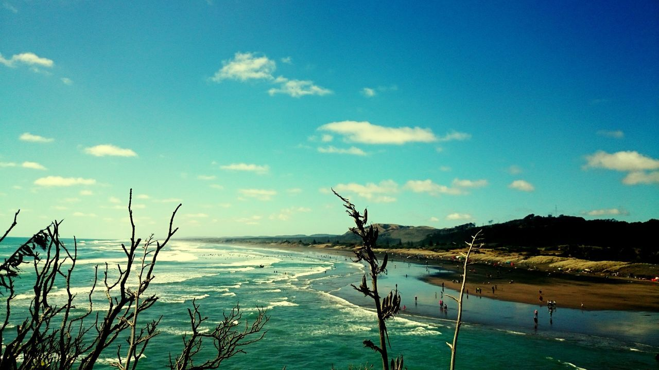 Muriwai Muriwaibeach Newzealand Surf Beach Sun Kiwisummer