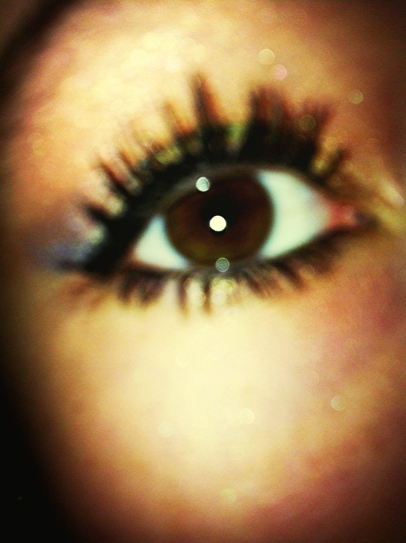My Eye Pretty Makeup Eye Shadow Love It