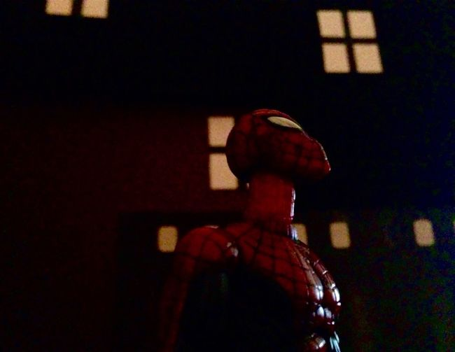 Backlog from my Instagram. Spiderman Marvellegends Toybiz Marvel Toyphotography