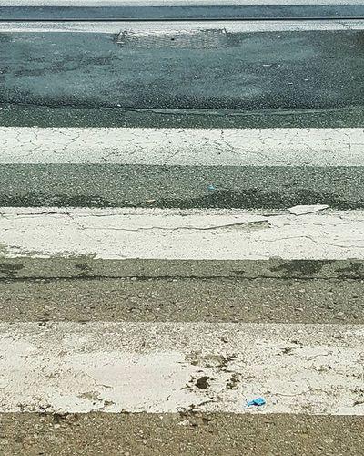 Subsonica Strade Se tutto ciò che cerco nasconde un movimento quale destinazione può' incontrarci Se in tutto ciò che inquadro il senso è già sfocato qual è l'angolazione per fissarci Strade che si lasciano guidare forte poche parole piogge calde e buio tergicristalli e curve da drizzare strade che si lasciano dimenticare Leggero in fondo solo l'umore acceso al volo senza lasciare il tempo di pensarci ti guardo che mi guardi non so se salutarti o fare finta che non sia già tardi Strade che si lasciano guidare forte poche parole piogge calde e buio tergicristalli e curve da drizzare strade che si lasciano dimenticare Strade che si lasciano guidare forte andare via cosi poche parole piogge calde e buio via cosi……via cosi tergicristalli e curve da tremare andare via cosi strade che si lasciano dimenticare Strade che si lasciano guidare forte poche parole piogge calda e buio tergicristalli e curve da drizzare strade che si lasciano dimenticare Strade che si lasciano guidare forte andare via cosi poche parole piogge calde e buio via cosi……via cosi tergicristalli e curve da tremare andare via cosi strade che si lasciano dimenticare Forse sta a pochi metri da me quello che cerco e vorrei trovare la forza di fermarmi perché sto già scappando mentre non riesco a stringere più a fondo e ora che sto correndo vorrei che fossi con me che fossi qui. Sento a pochi metri da me quello che c'era e vorrei trovare la forza di voltarmi perché se stai svanendo io non ci riesco a stringere più a fondo ora che sotto il mondo vorrei che tu fossi qui che fossi qui Strada Seitulamiacittà Torinoècasamia Igtorino Ig_torino Istatorino Torinodigitale Torinoèbella Seitulamiacittà Torinolamiacittà Torino To  Fermadelpullan Striscepedonali Prosepettive Limportanteéandareavanti Lamiastrada Geometria Passeggiando Andandoalavoro Camminare Avantimaiindietro Turin
